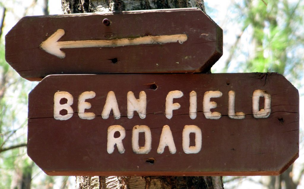 Bean-field Road Sign