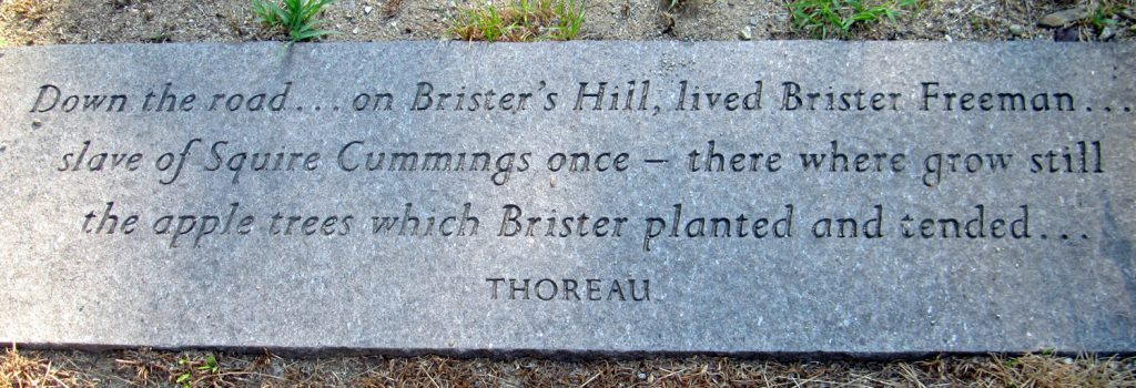 Thoreau quote on Brister's Hill