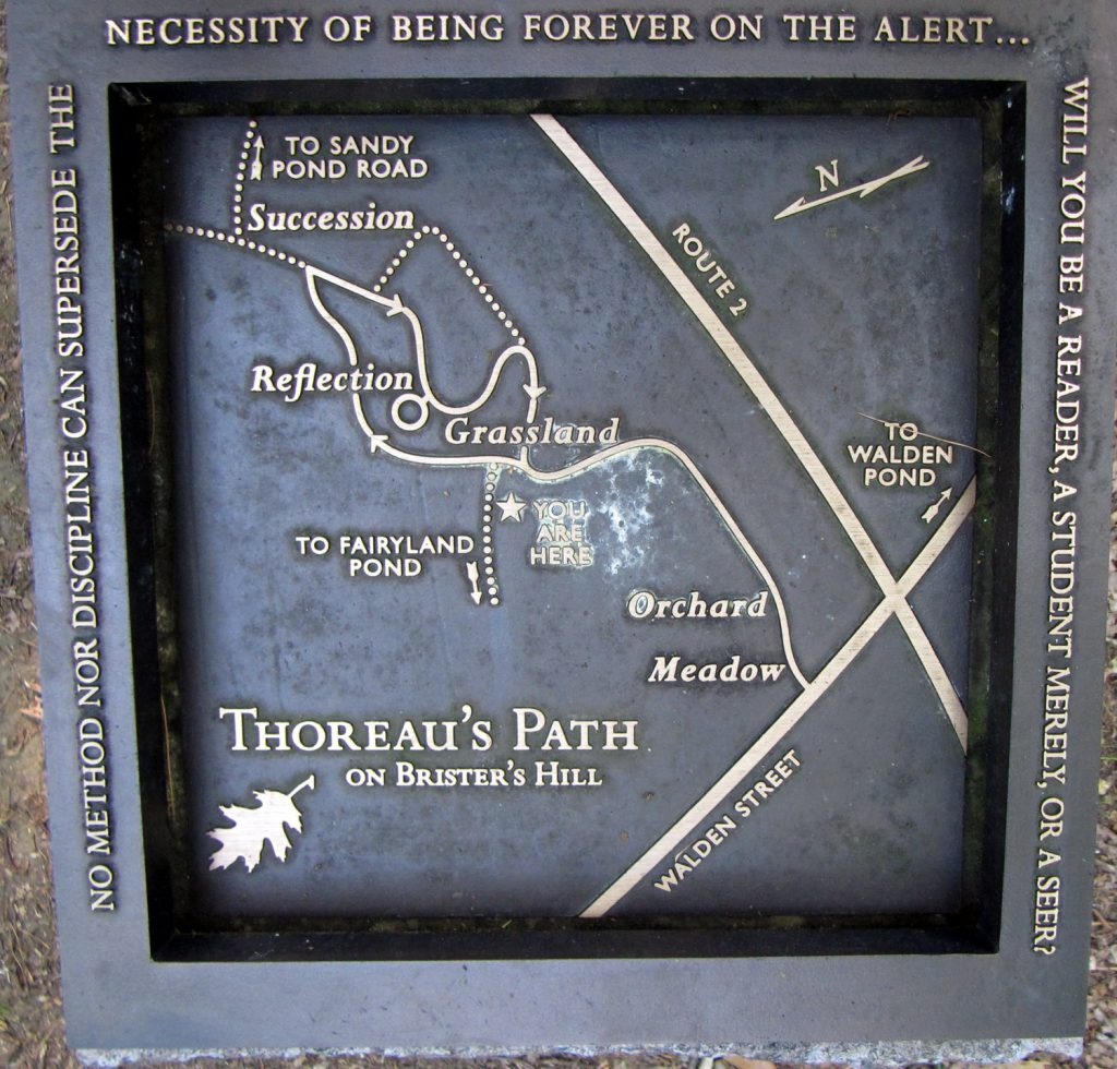 Map of Thoreau's Path on Brister's Hill